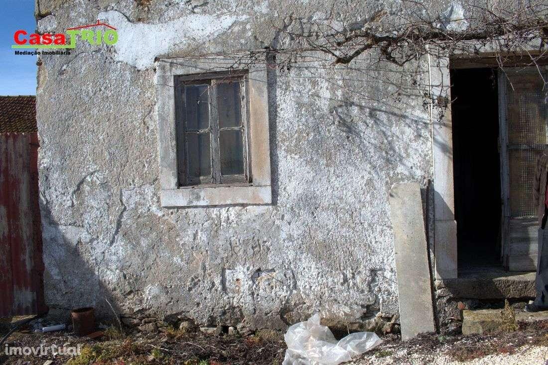 Quintas e herdades para comprar, Bárrio, Leiria - Foto 15