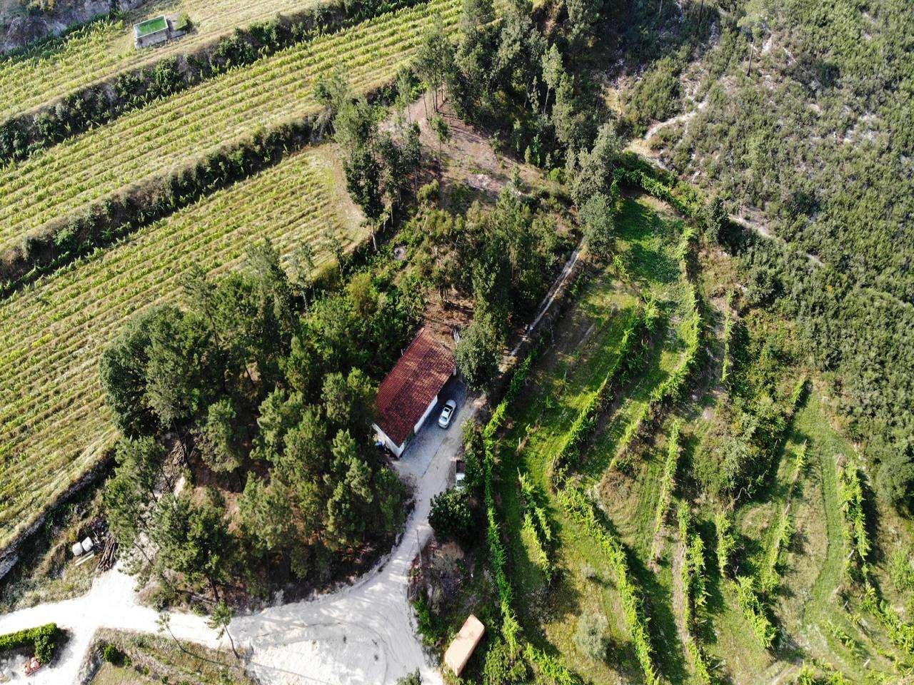 Quintas e herdades para comprar, Gondar, Porto - Foto 1