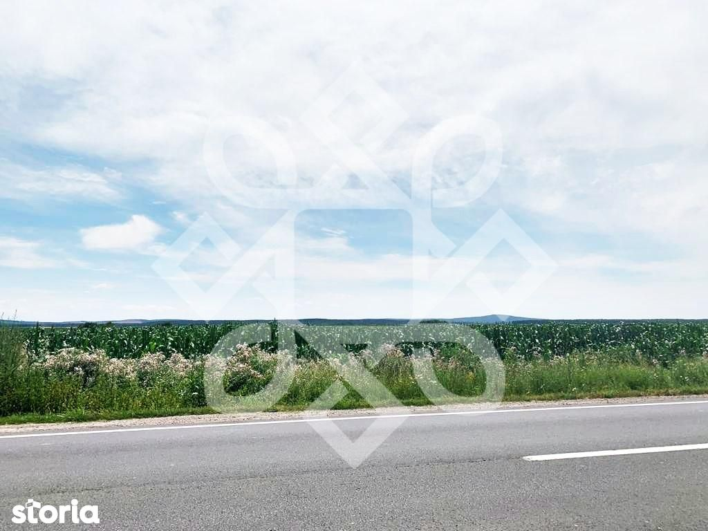 Teren pentru investitii la E60 Bihor TV023