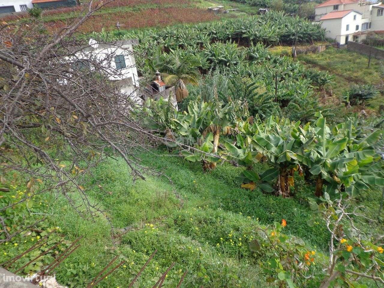 Terreno para comprar, Santo António, Ilha da Madeira - Foto 1