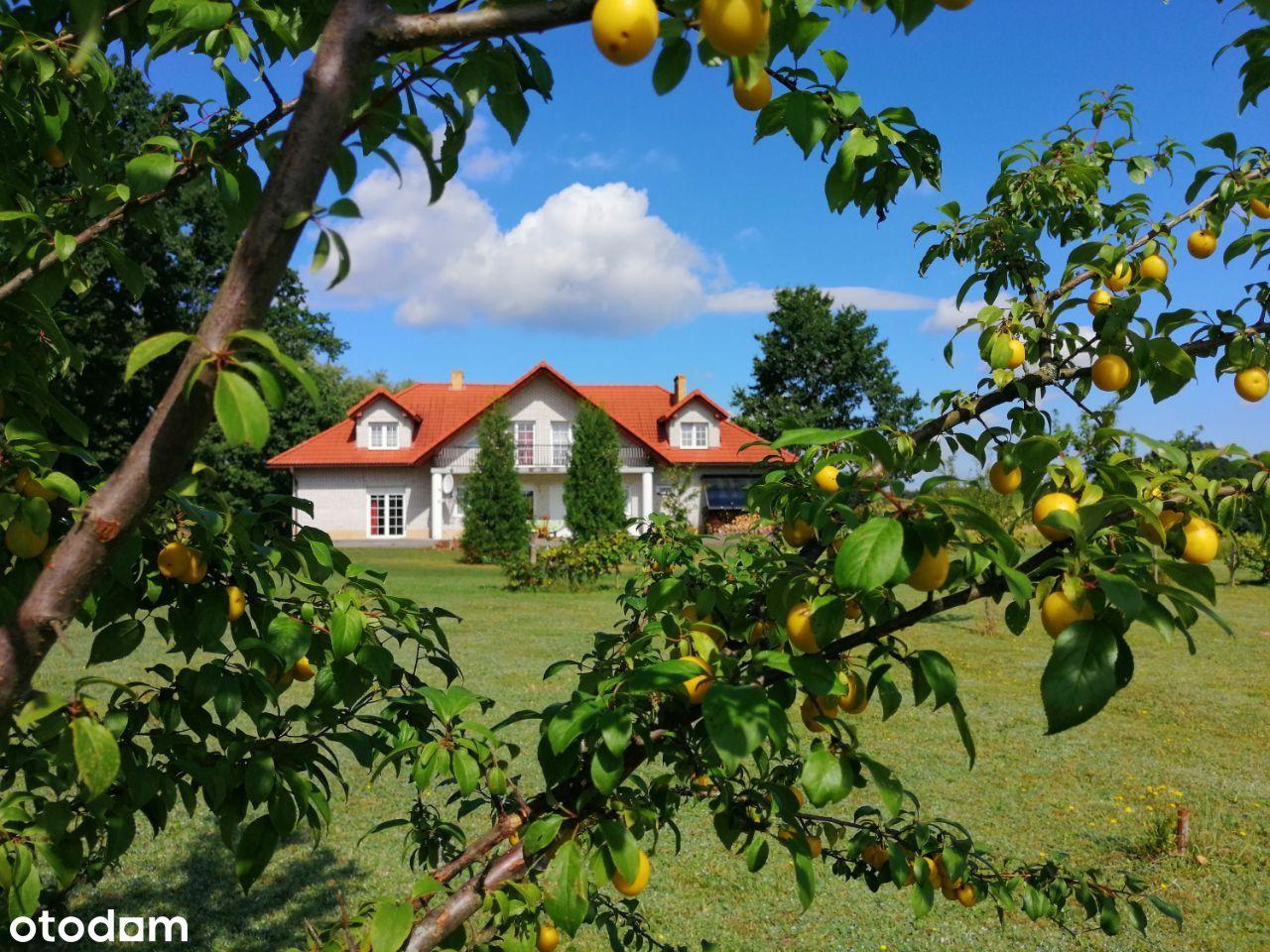 Komfortowy – piękny duzy dom na wzgórzu