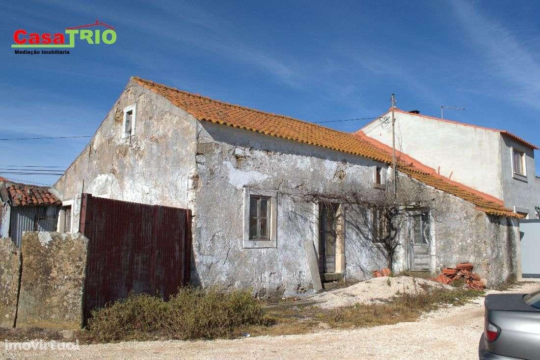 Quintas e herdades para comprar, Bárrio, Leiria - Foto 3
