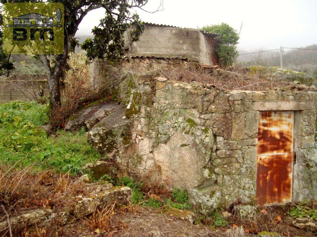 Quintas e herdades para comprar, Almaceda, Castelo Branco - Foto 20
