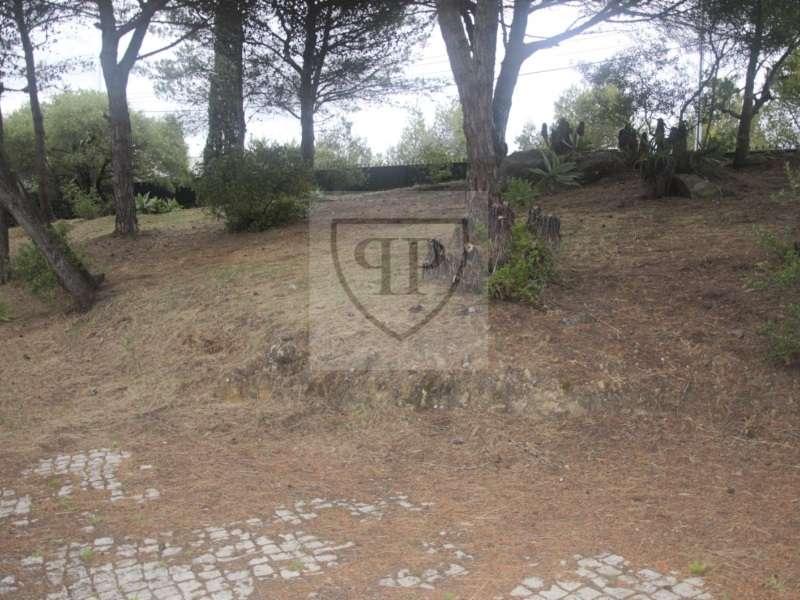 Moradia para comprar, Alcabideche, Cascais, Lisboa - Foto 30