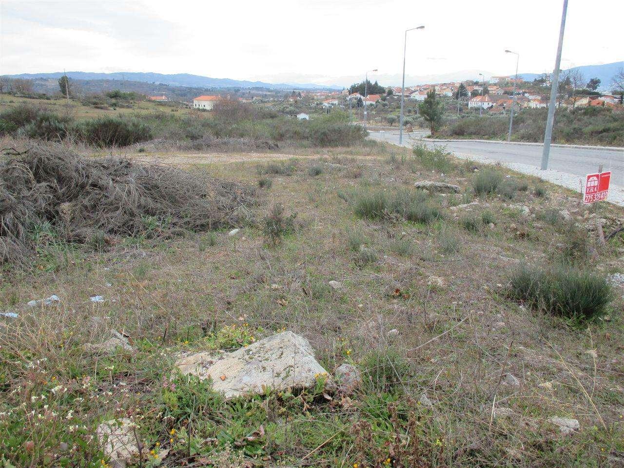 Quintas e herdades para comprar, Caria, Castelo Branco - Foto 2