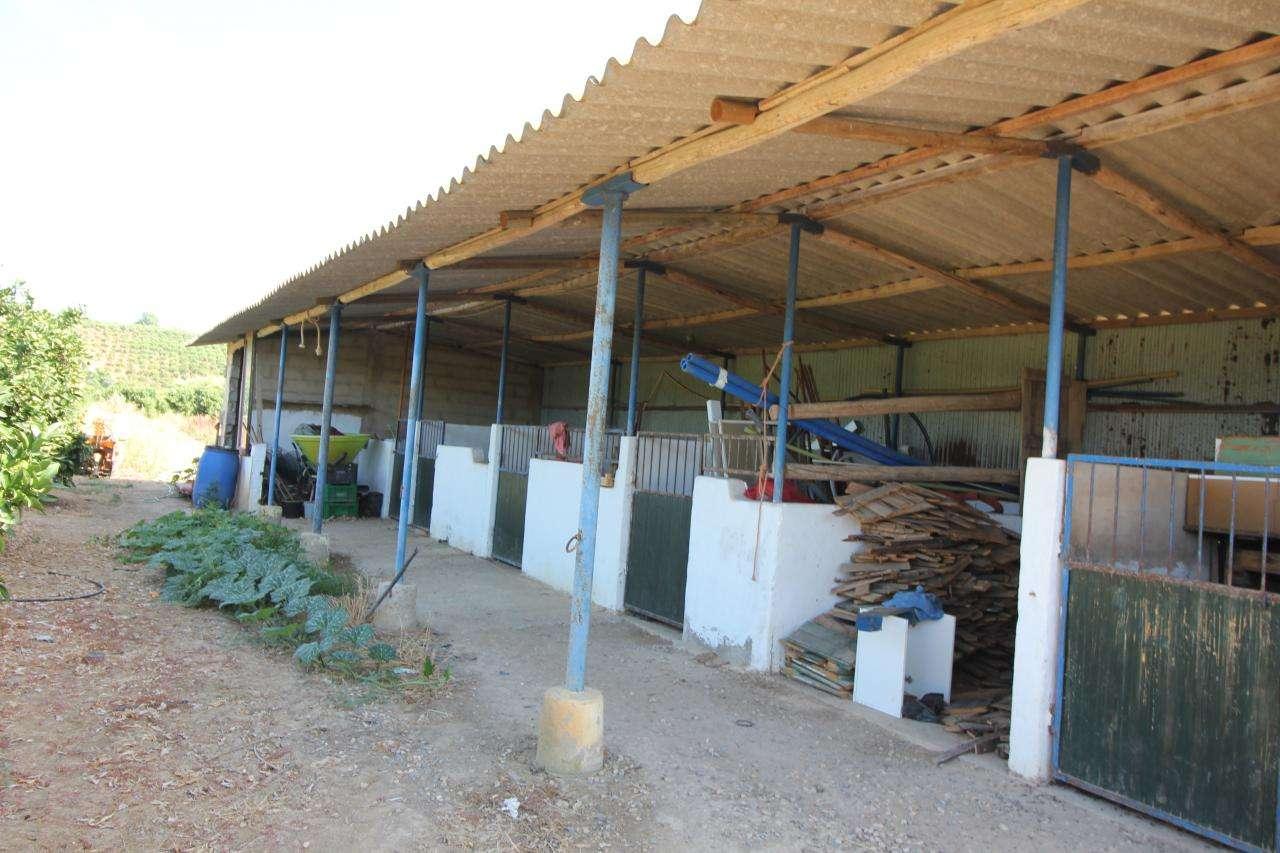 Quintas e herdades para comprar, Porches, Faro - Foto 9