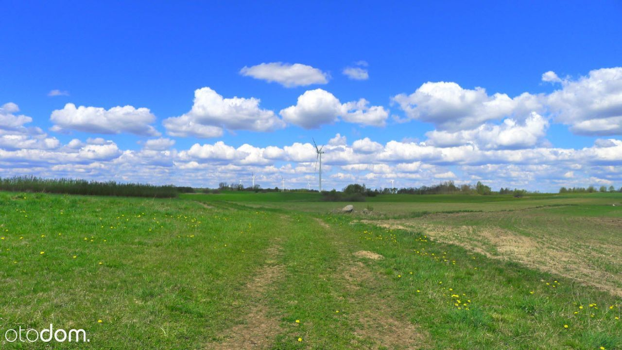 Bakałarzewo - 2 ha ziemi rolnej