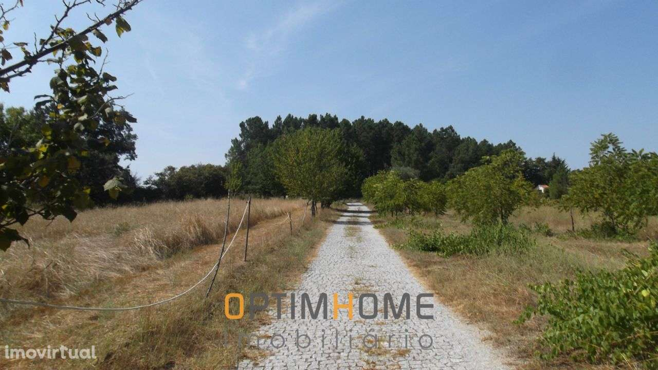 Quintas e herdades para comprar, Caria, Belmonte, Castelo Branco - Foto 16