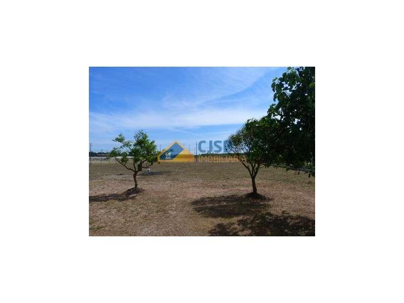 Quintas e herdades para comprar, Samora Correia, Santarém - Foto 52