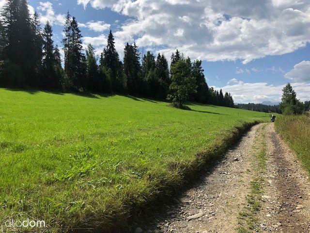 Działki + las w spokojnej i malowniczej okolicy.