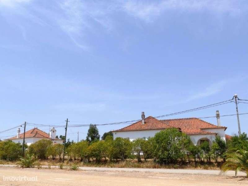 Terreno para comprar, Azinheira dos Barros, Setúbal - Foto 10