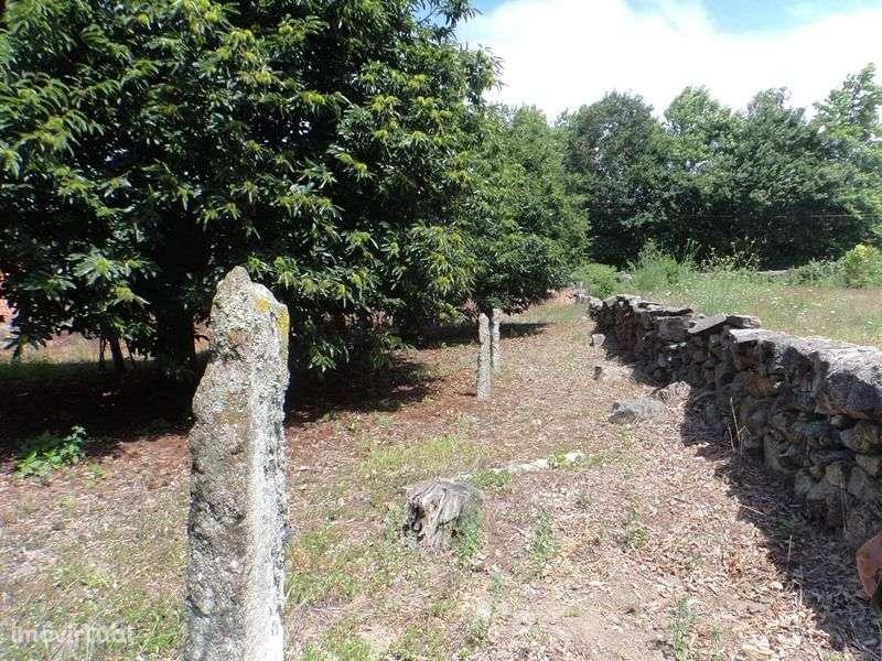 Terreno para comprar, Viana do Castelo (Santa Maria Maior e Monserrate) e Meadela, Viana do Castelo - Foto 6