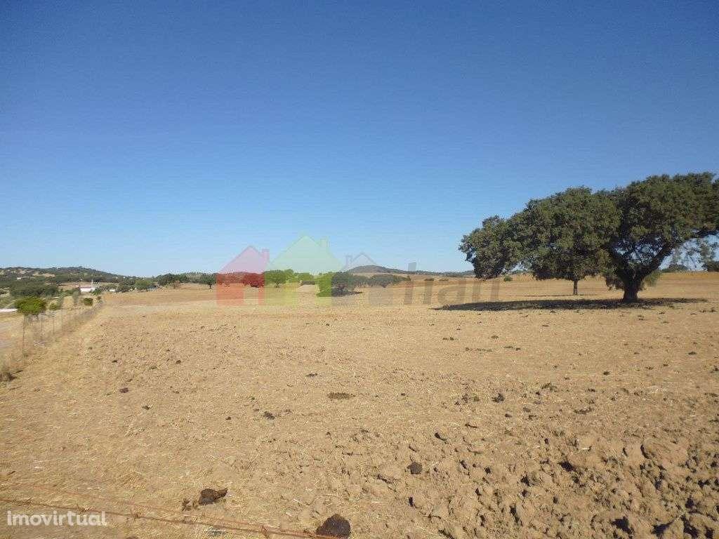 Quintas e herdades para comprar, Vila Verde de Ficalho, Beja - Foto 24