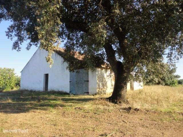 Quintas e herdades para comprar, Pavia, Évora - Foto 7