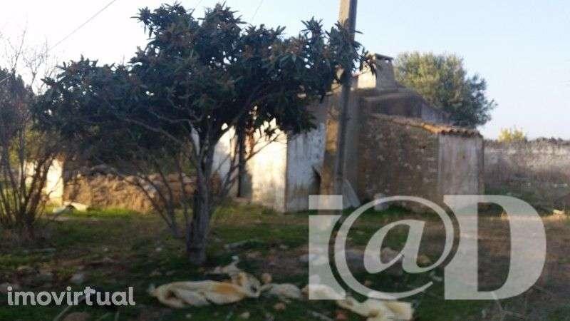 Quintas e herdades para comprar, Santa Bárbara de Nexe, Faro - Foto 2