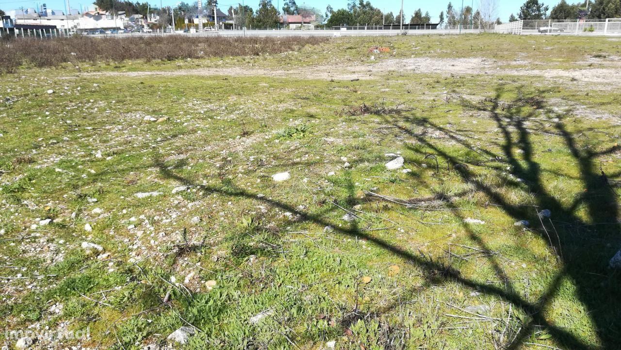 Terreno para arrendar, Faíl e Vila Chã de Sá, Viseu - Foto 5