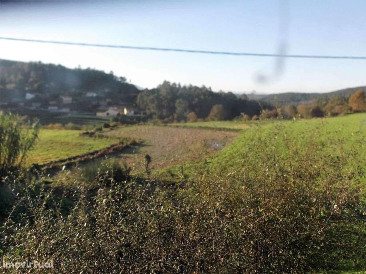 Moradia para comprar, Agualonga, Viana do Castelo - Foto 5