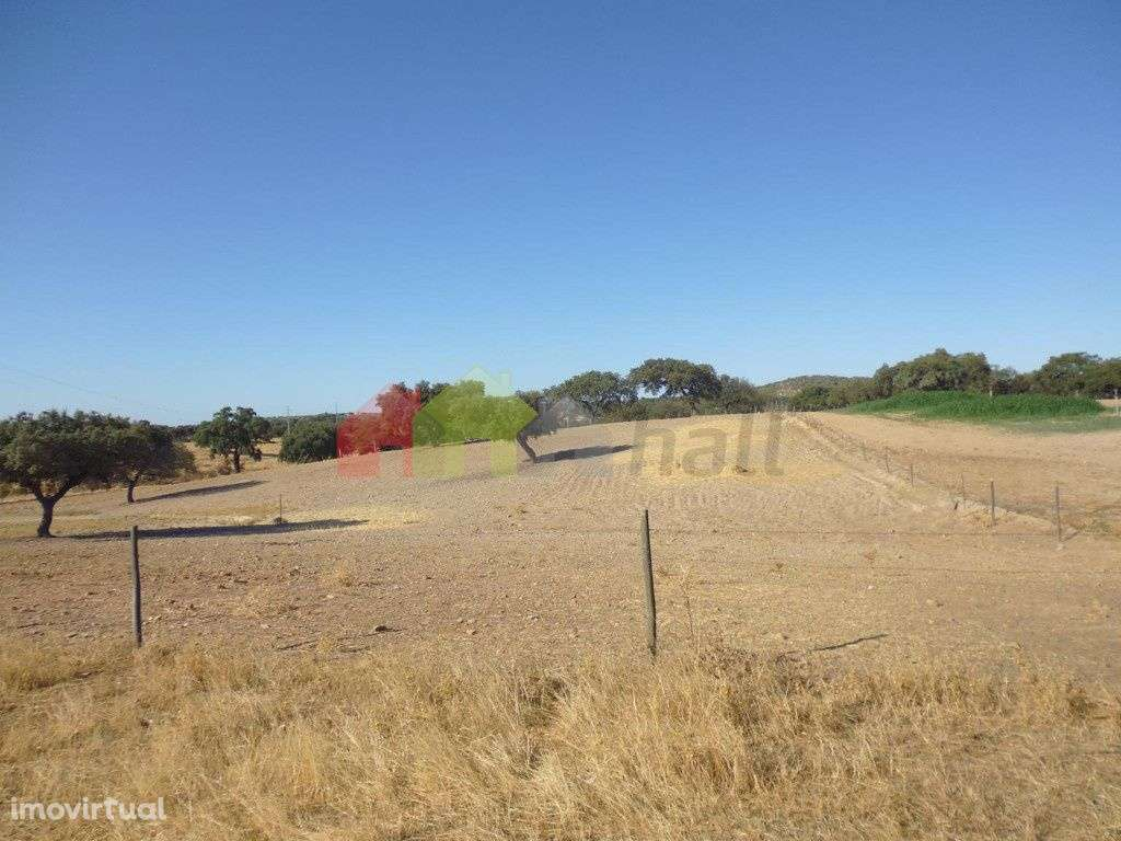 Quintas e herdades para comprar, Vila Verde de Ficalho, Beja - Foto 3