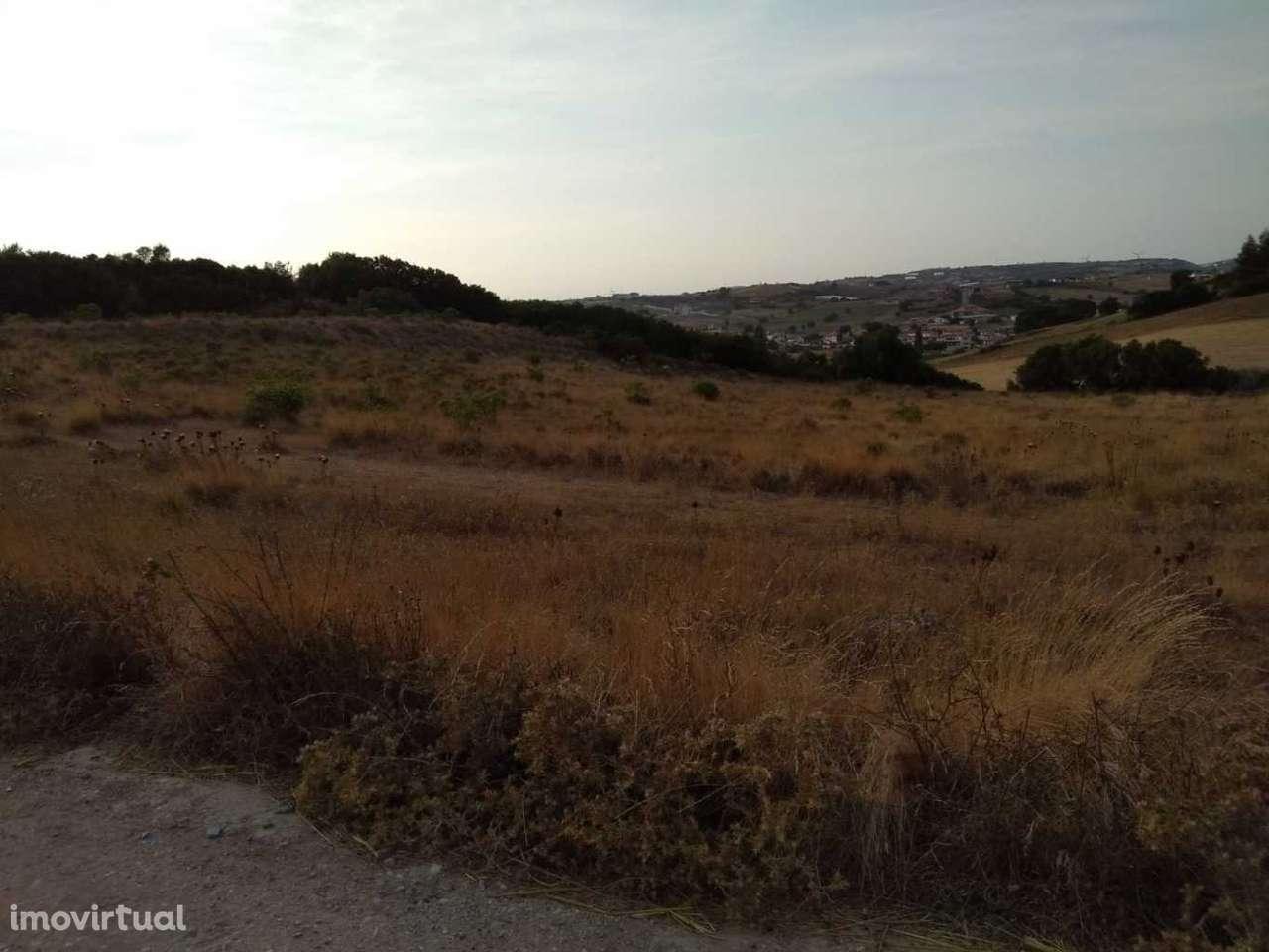 Terreno para comprar, Milharado, Lisboa - Foto 3
