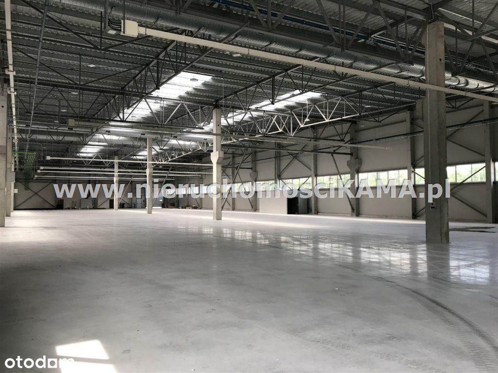 Hala/Magazyn, 9 514 m², Czechowice-Dziedzice