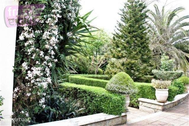 Quintas e herdades para comprar, Folgosa, Porto - Foto 3