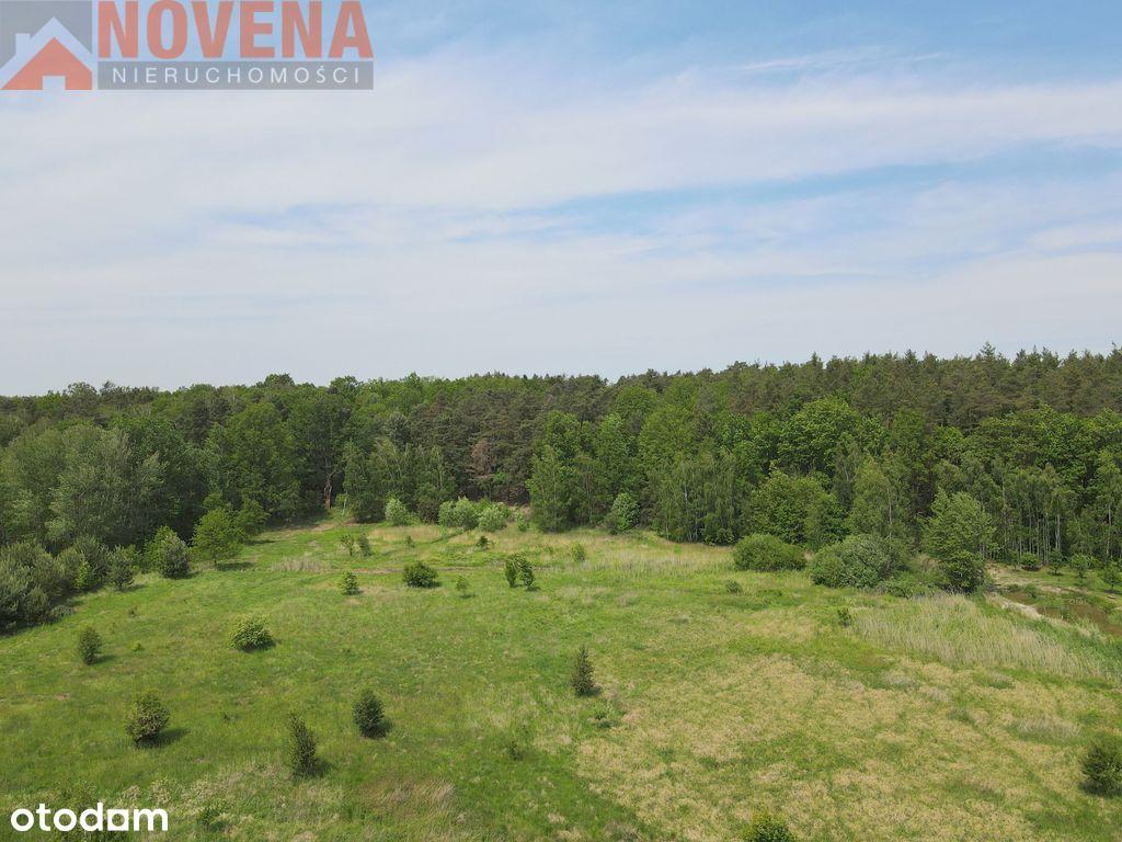Działki przy granicy Osolina, obok las.