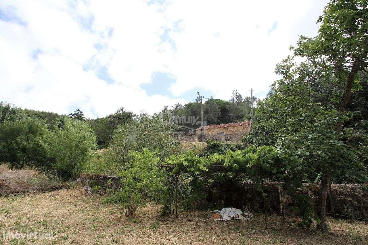 Quintas e herdades para comprar, Alcabideche, Cascais, Lisboa - Foto 14