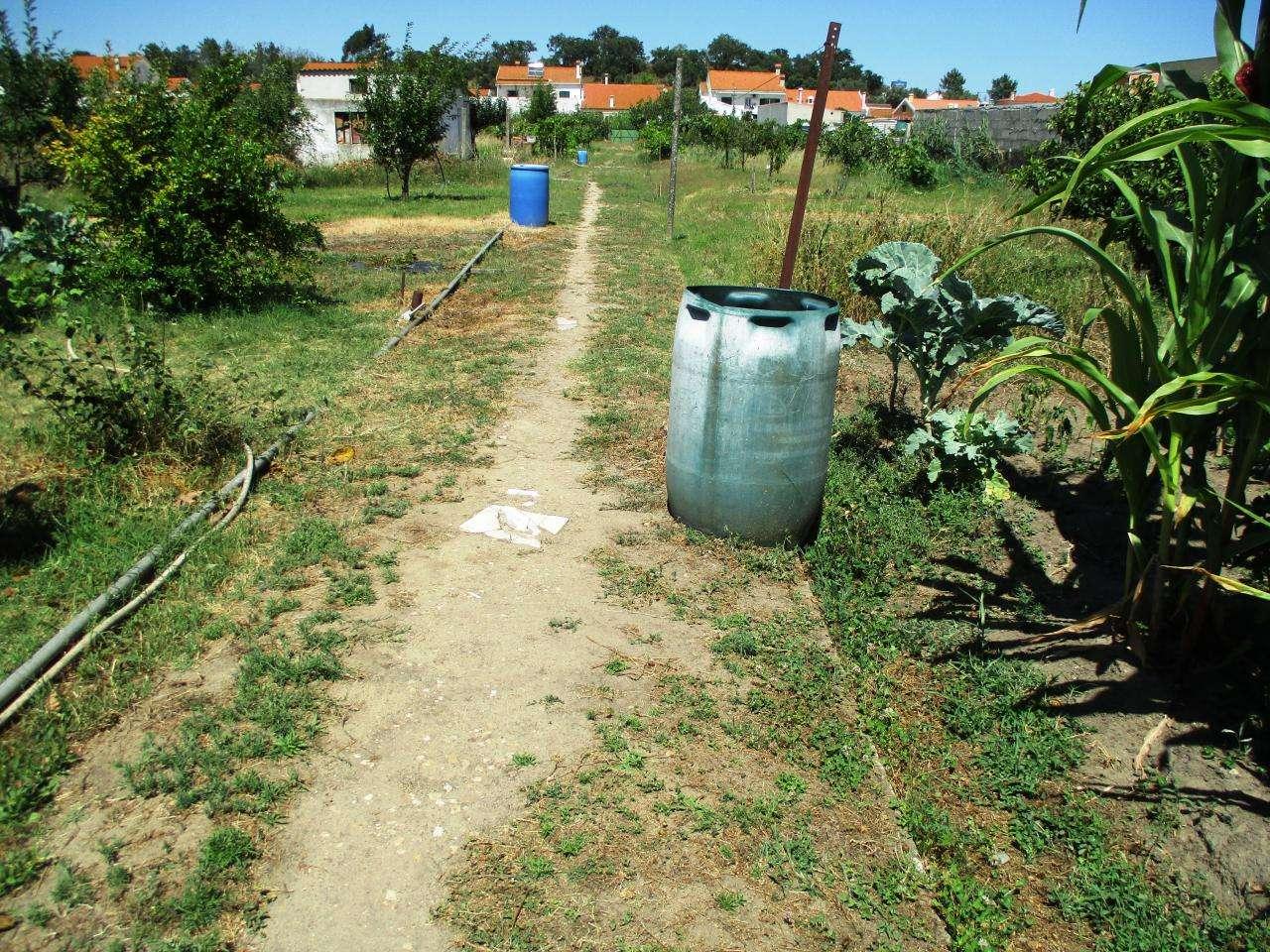 Terreno para comprar, Sado, Setúbal - Foto 3