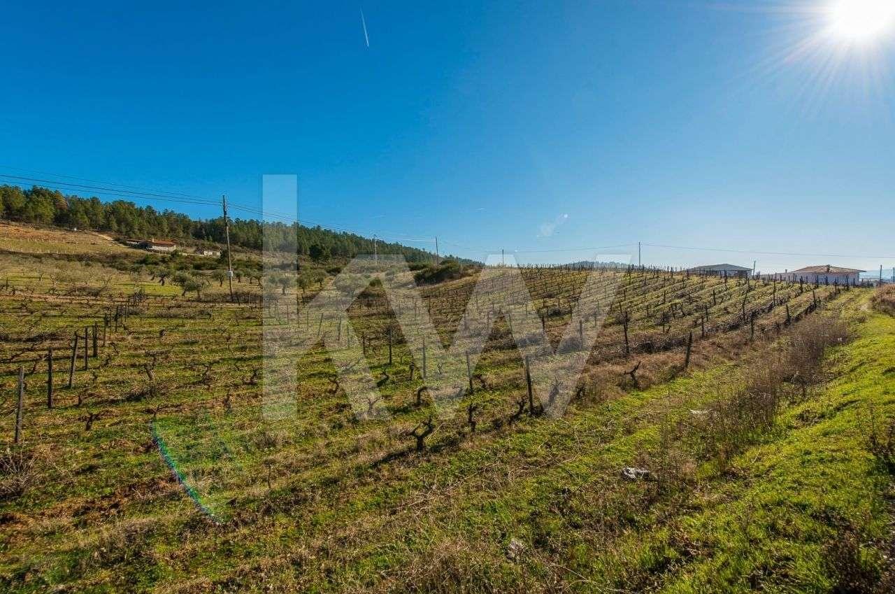 Quintas e herdades para comprar, Murça - Foto 46