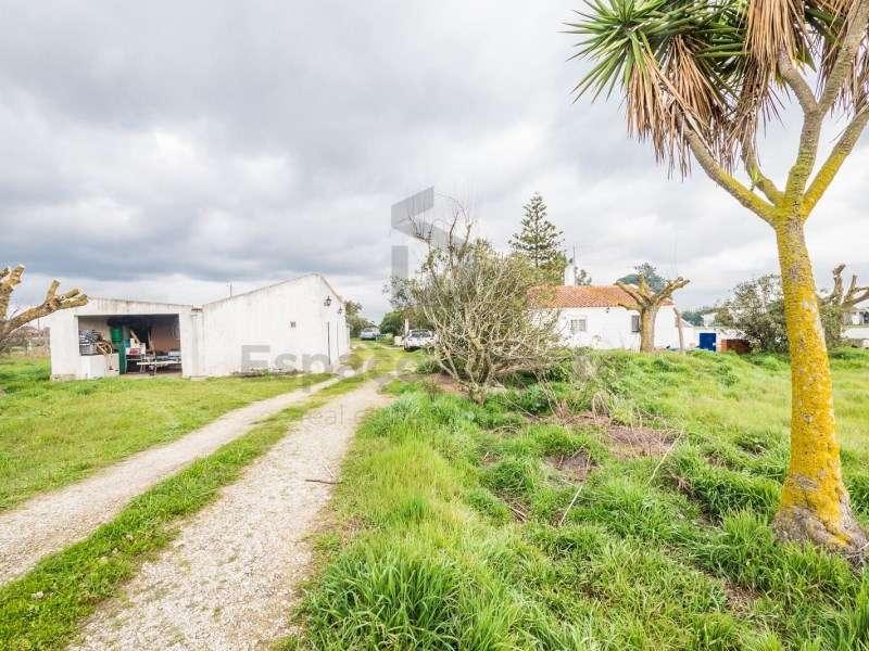 Quintas e herdades para comprar, Pinhal Novo, Palmela, Setúbal - Foto 3