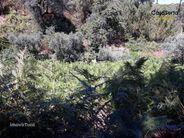 Terreno para comprar, Oleiros-Amieira, Oleiros, Castelo Branco - Foto 13