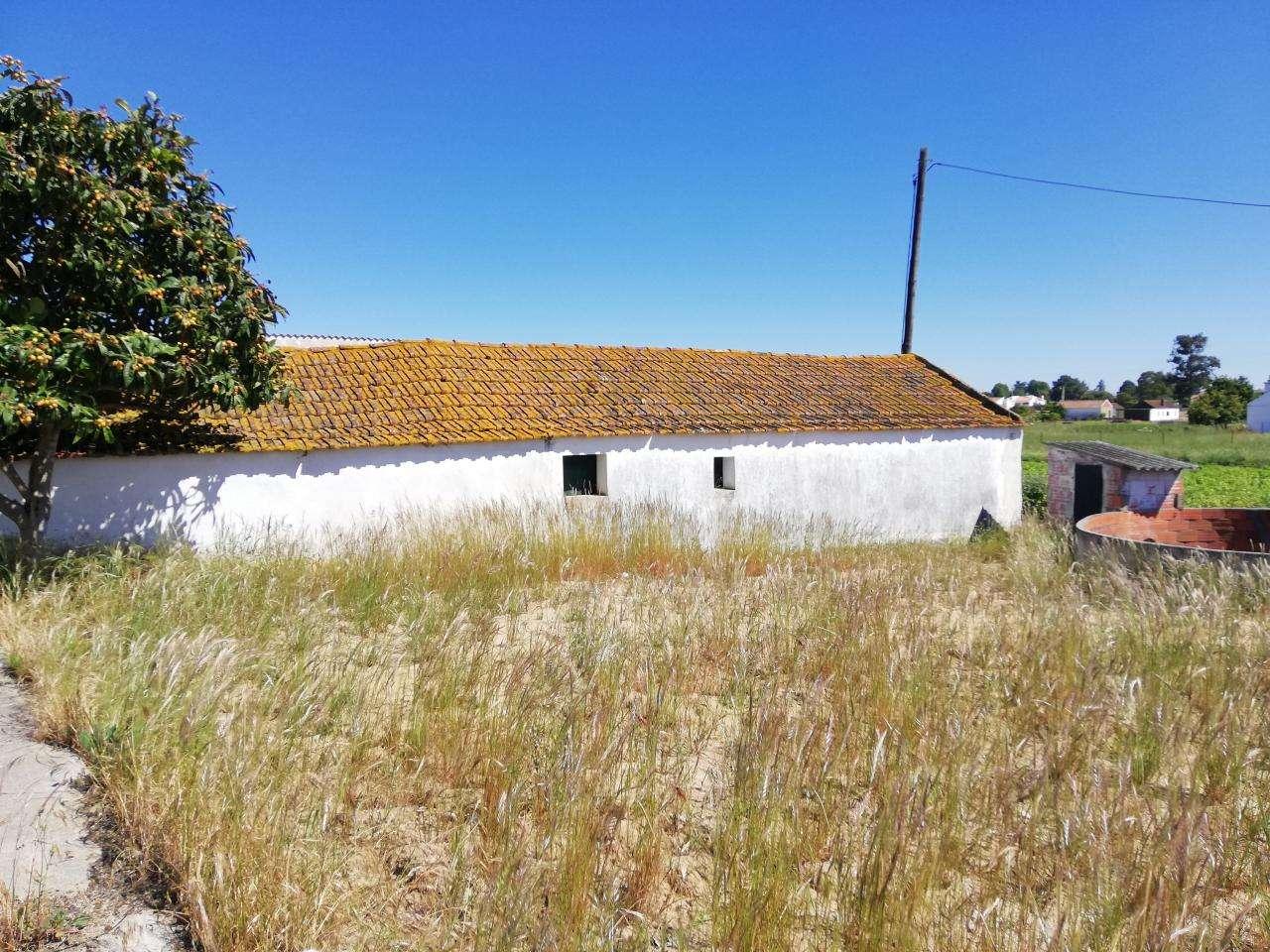 Quintas e herdades para comprar, Salvaterra de Magos e Foros de Salvaterra, Santarém - Foto 12
