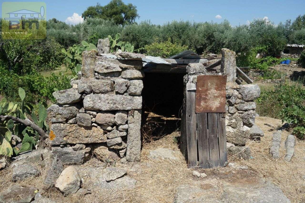 Quintas e herdades para comprar, Escalos de Cima e Lousa, Castelo Branco - Foto 7
