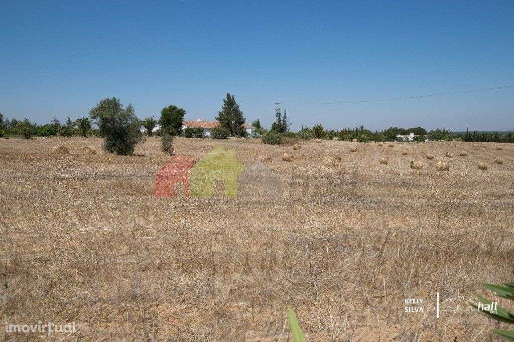 Quintas e herdades para comprar, Azinheira dos Barros, Setúbal - Foto 16