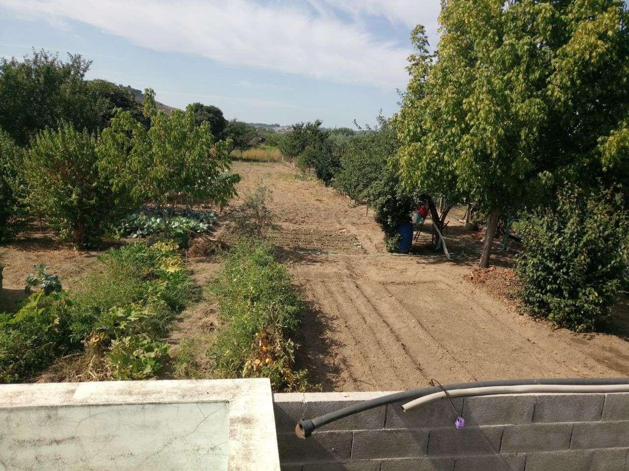 Terreno para comprar, Pego, Abrantes, Santarém - Foto 12