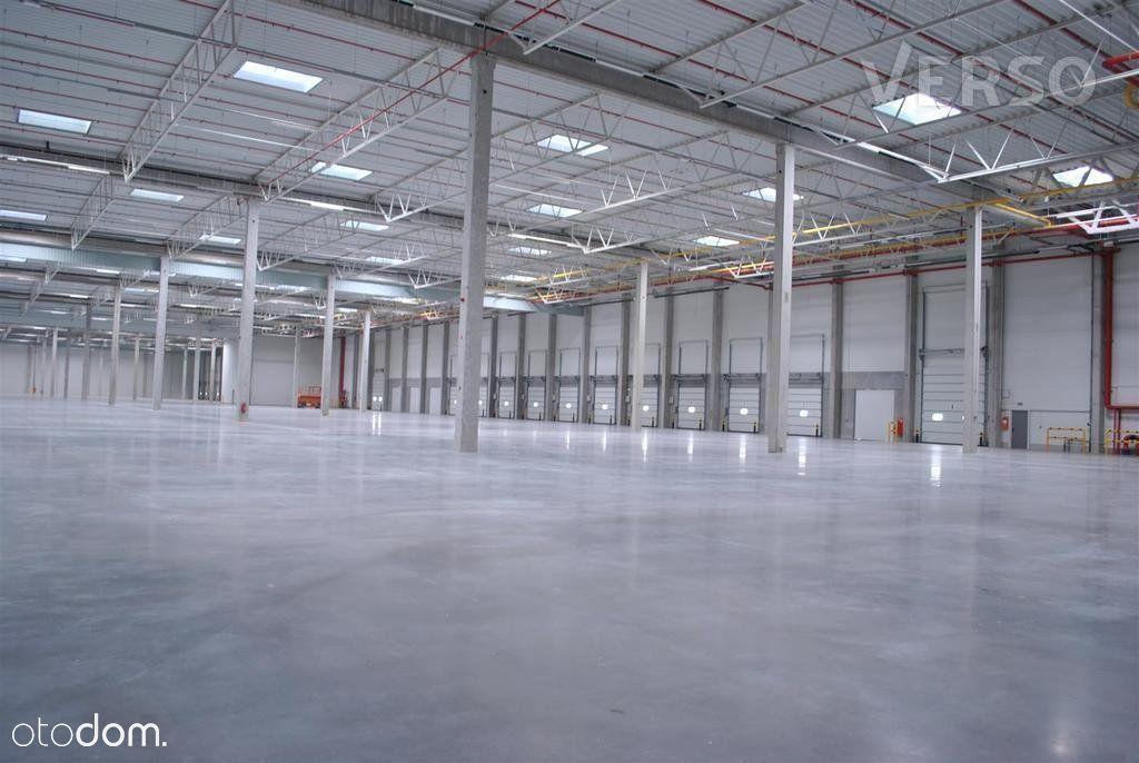 Magazyn/warehouse 3246 sqm. We speak english.
