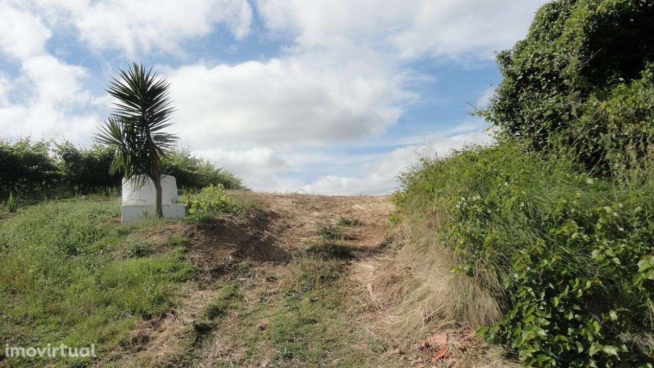 Terreno para comprar, Arruda dos Vinhos - Foto 4
