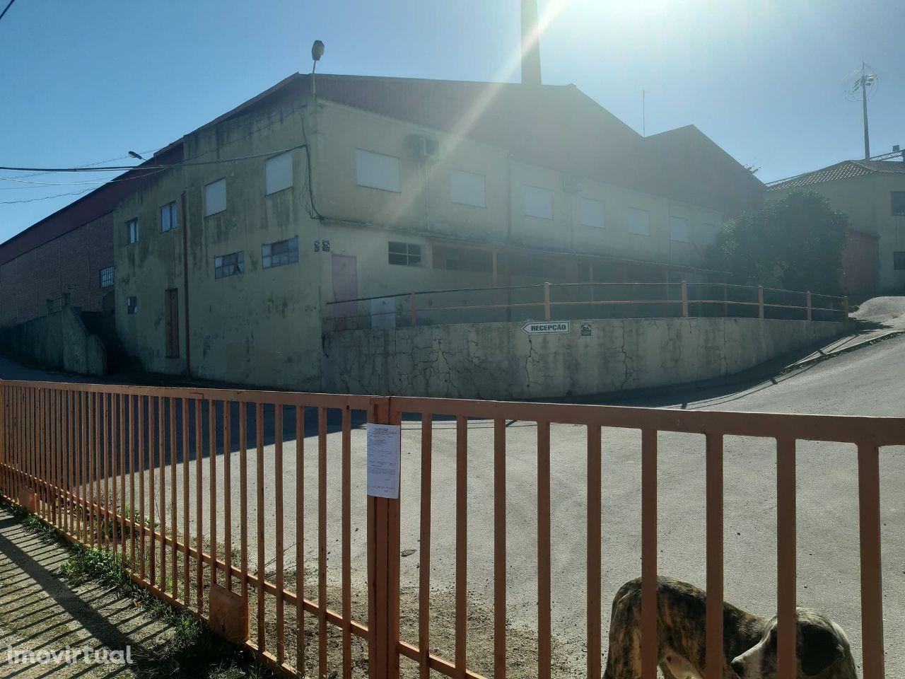 VENDA JUDICIAL - Fabrica em Ulme I Chamusca