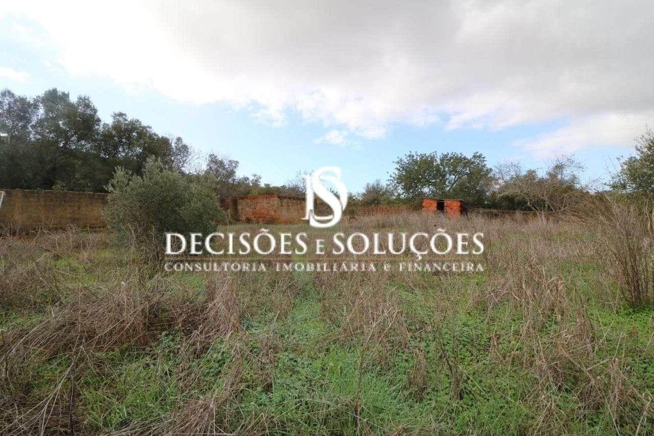 Quintas e herdades para comprar, Silves - Foto 13