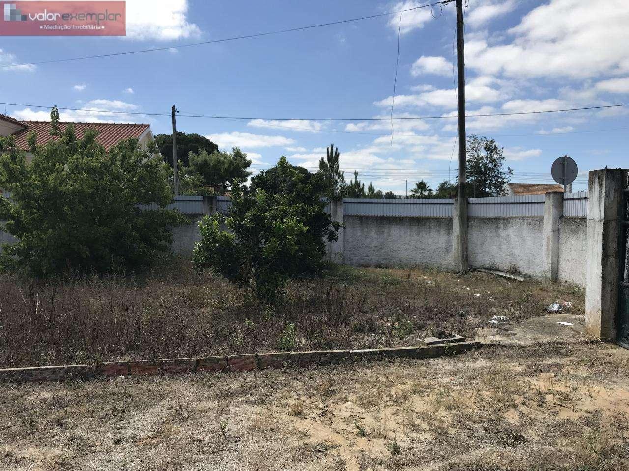 Terreno para comprar, Quinta do Anjo, Setúbal - Foto 15