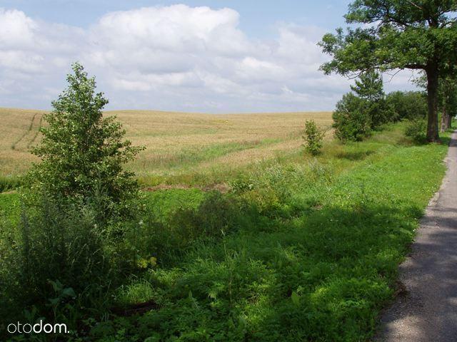 Działka rolna Marcinowo