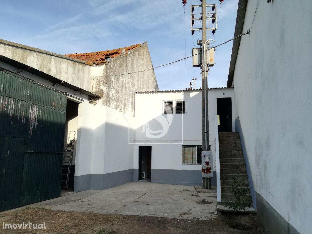 Terreno para comprar, Ermidas-Sado, Santiago do Cacém, Setúbal - Foto 7