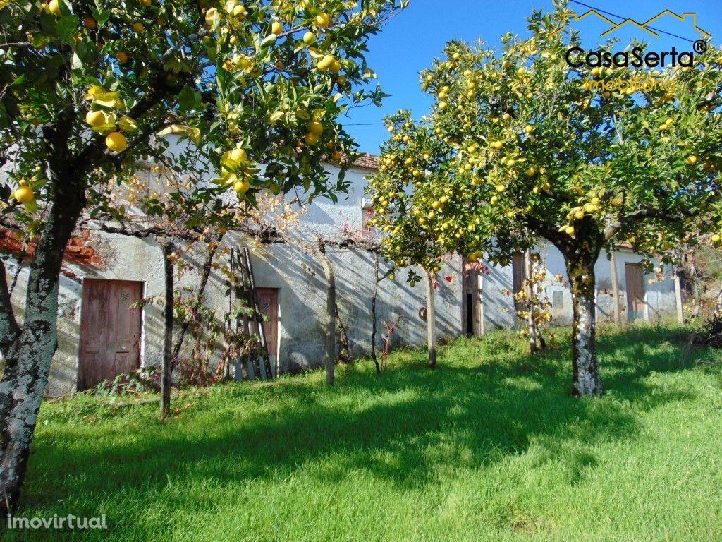 Terreno para comprar, Sertã, Castelo Branco - Foto 18