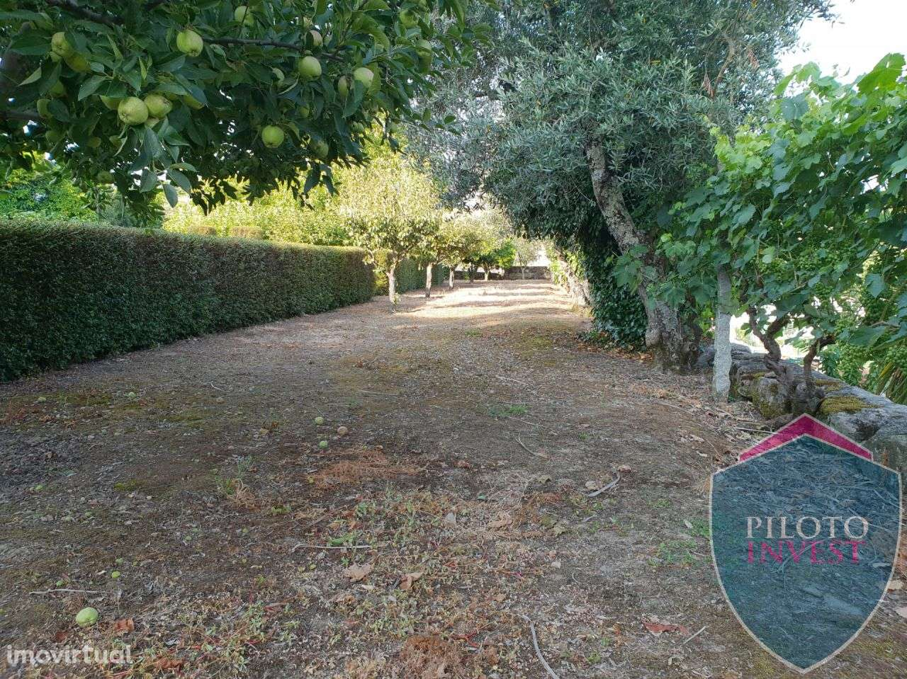 Quintas e herdades para comprar, Povolide, Viseu - Foto 24
