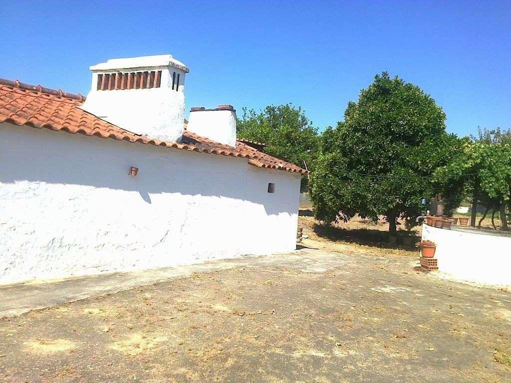 Quintas e herdades para comprar, Ponte de Sor, Tramaga e Vale de Açor, Portalegre - Foto 6
