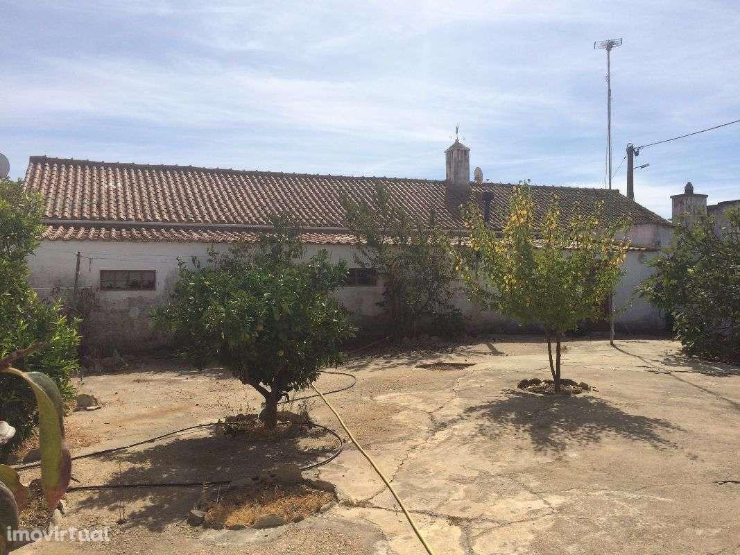 Quintas e herdades para comprar, Panoias e Conceição, Beja - Foto 9