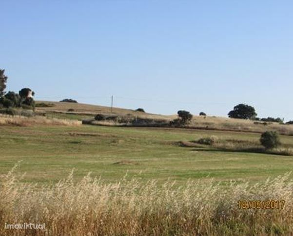 Terreno misto com 31.500Ha em Évora