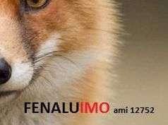 Agência Imobiliária: Fenaluimo Lda