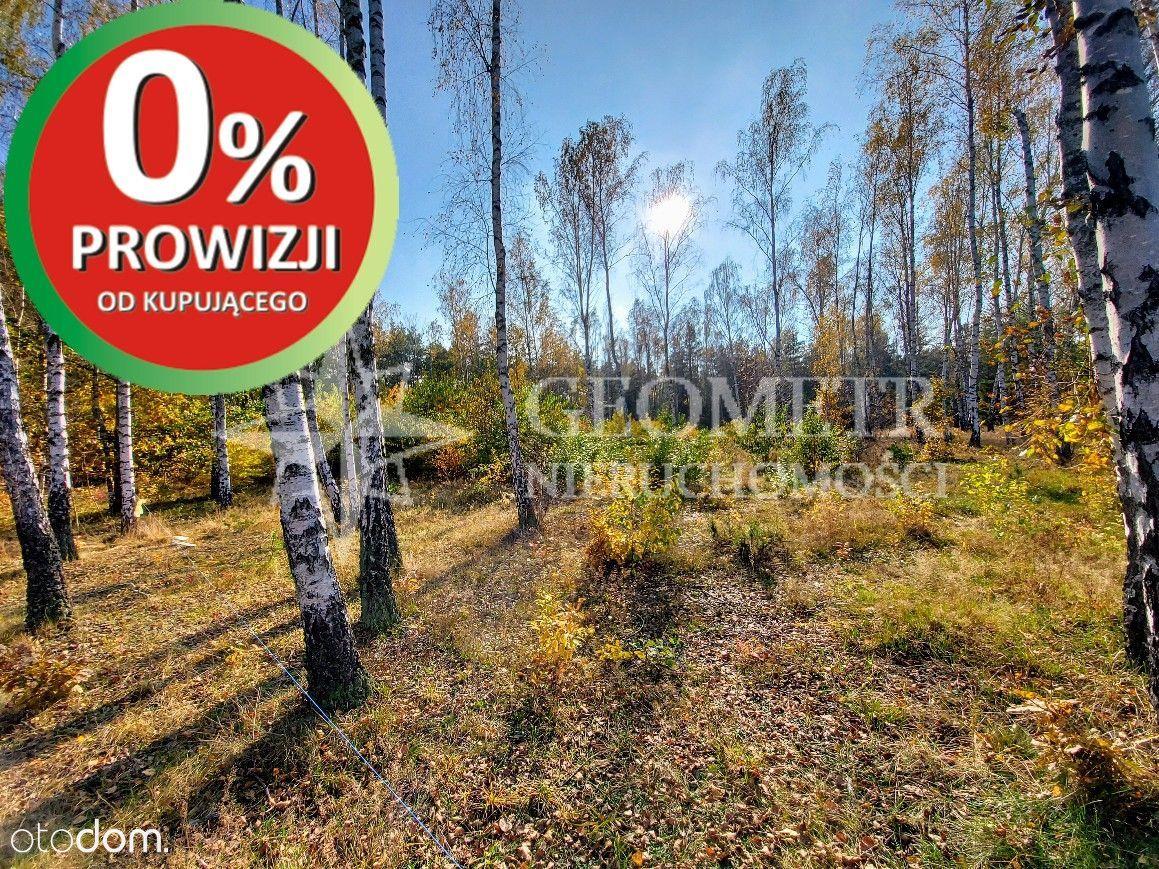 malownicza zielona lokalizacja - blisko lasów, 2km