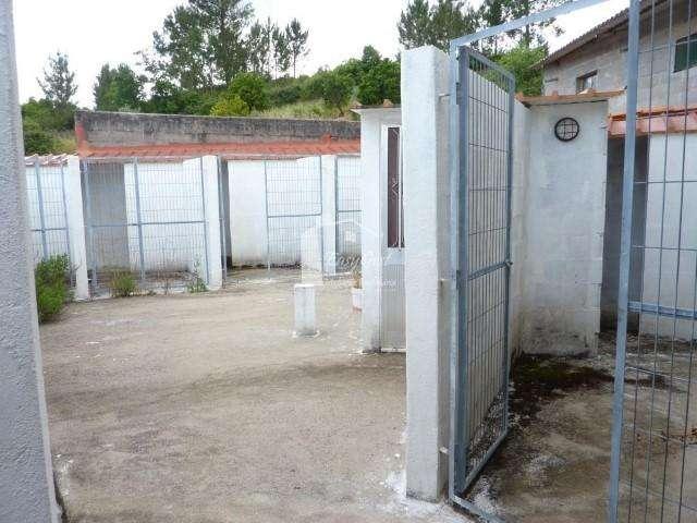 Quintas e herdades para comprar, Martinchel, Abrantes, Santarém - Foto 13